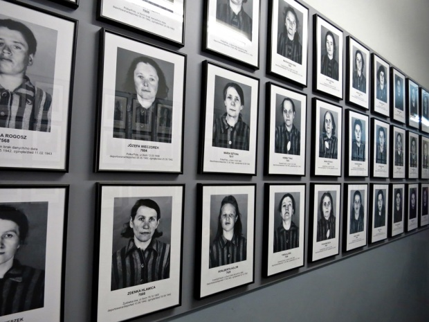Identification photographs of Jewish women taken after arriving at Auschwitz.
