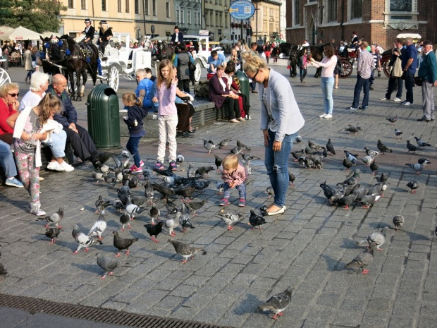Don't like it? Feed to it to the city's one billion pigeons!